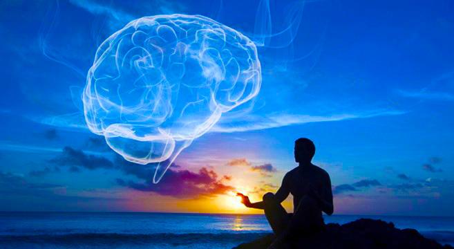 58e8cd8d9ec2c-meditation-brain (1)